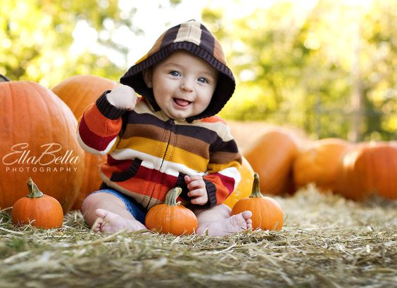 perfectly pumpkin patch