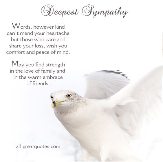 sympathy cards deepest sympathy and who cares on pinterest