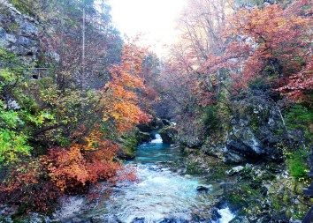 7 Cosas Que Hacer en Tu Próxima Visita a Bled Eslovenia