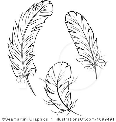 Feather Outline Clip Art rf Feathers