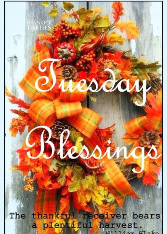 Tuesday Blessings More