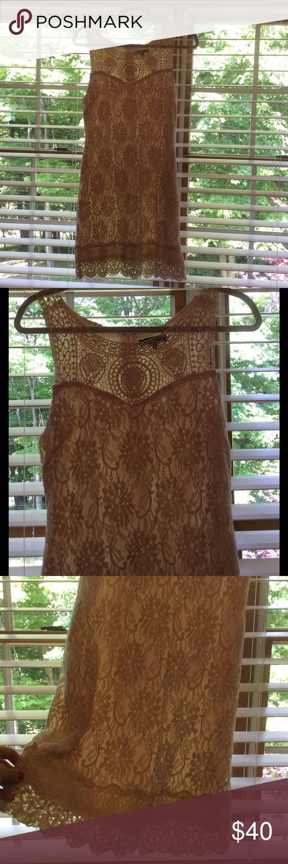 Beige Lace Dress From UO Detailed lace shell over a nude slip. C. Luce purchased from Urban Outfitters. Zipper on the side. Fits like a 4. C. Luce Dresses