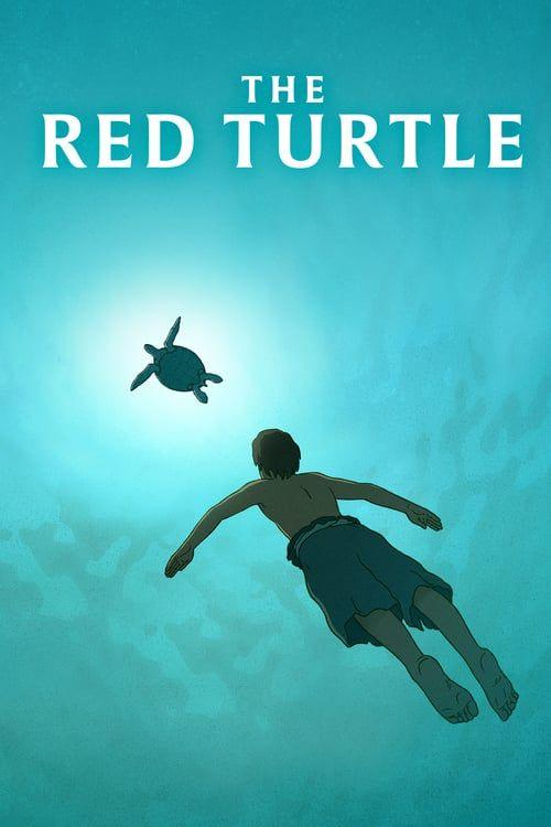 Mega Hd The Red Turtle Pelicula Completa Online Espanol Latino Flixmovieshd Com The Red Turtle Full Movies Online Free Full Movies