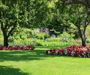 Chicago- Cuneo Gardens: Great date spot?