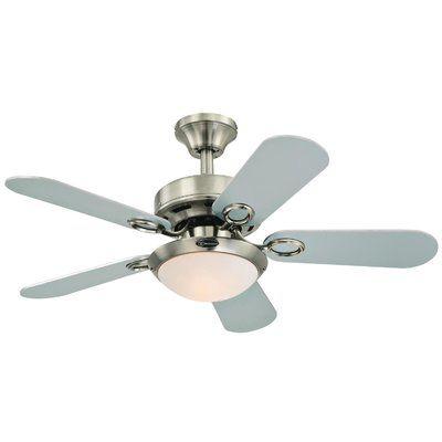 Andover Mills 36 Birchwood Two Light Reversible 5 Blade Indoor Ceiling Fan Ceiling Fan Modern Ceiling Fan Brushed Nickel Ceiling Fan