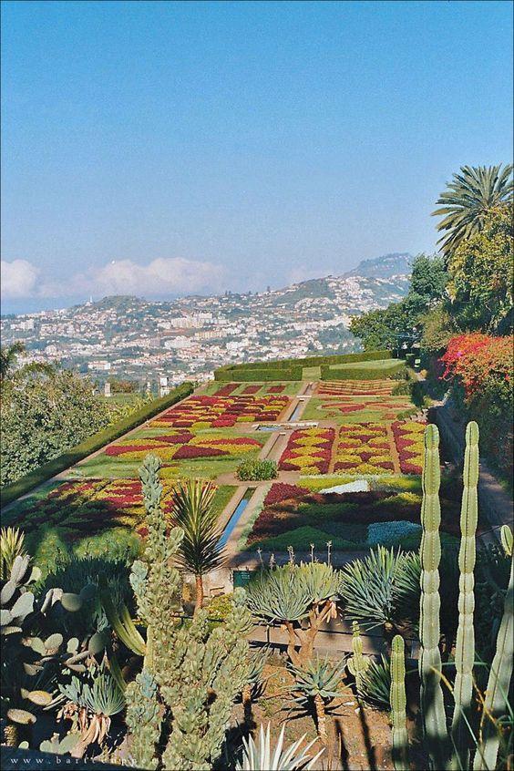 travel - travel #garden, Funchal, #Madeira
