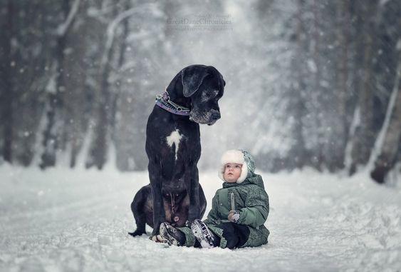 20 photographies sublimes d'enfants tout-petits et leurs gros chiens: