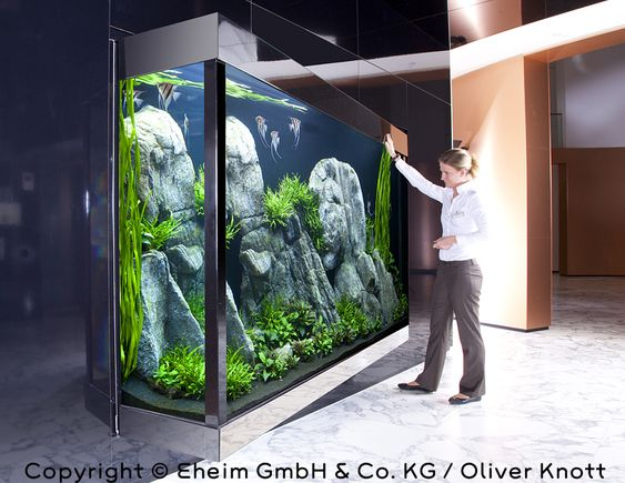 Aquarium fish dreams pinterest aquarium und panzer for Aquarium katalog