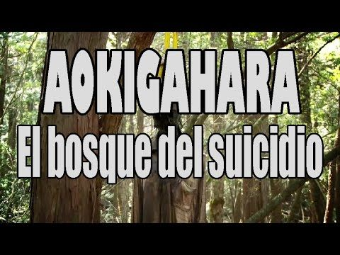 Aokigahara, Japón;  El bosque del suicidio