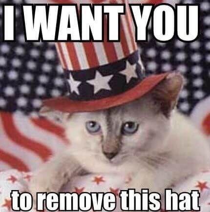 Best 50 Hilarious Happy 4th Of July Memes Pics Updated May 2020 Funny 4th Of July 4th Of July Meme Fourth Of July Meme