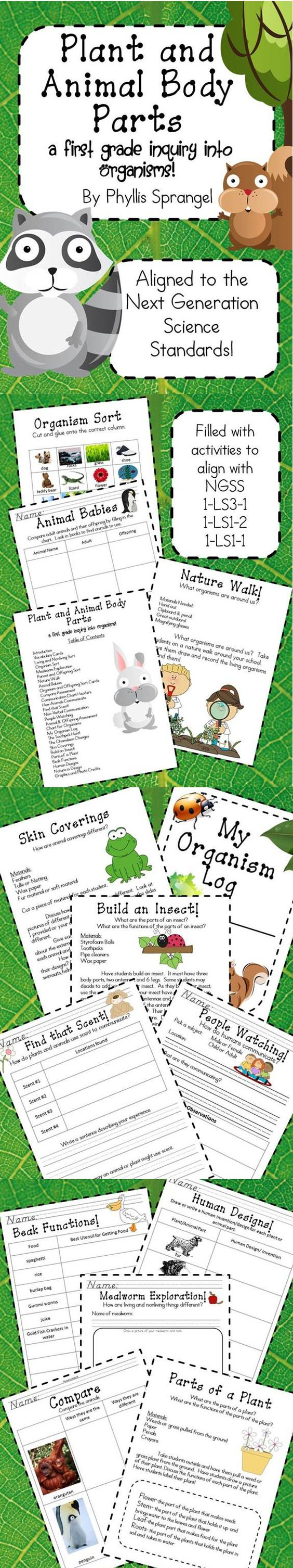Plant and Animal Body Parts is aligned to the Next Generation Science Standards. It contains activities, explorations, resources and assessments for your class! This is a fantastic resource for first grade teachers to build their curriculum using the Next Generation Science Standards!  $10
