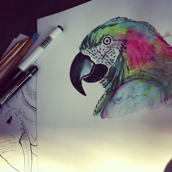 My watercolour parrot painting.