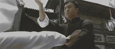 martial arts kung fu donnie yen ip man wing chun