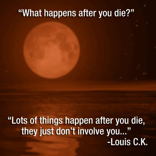 What Happens After You Die Funny Quotes Make Me Laugh Funny Jokes