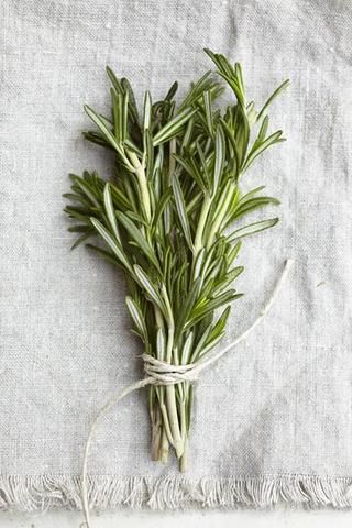 rosemary, indoor herb garden
