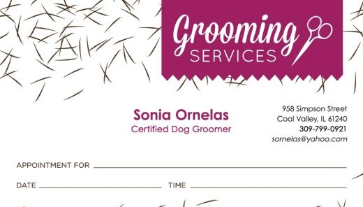 Room To Groom Dog Grooming Business Appointments Grooming Salon