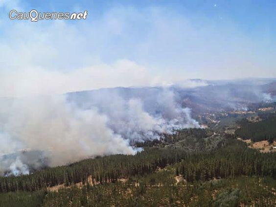 Cauquenesnet / Noticias de Cauquenes: Cauquenes y San Javier con Alerta Roja por incendi...