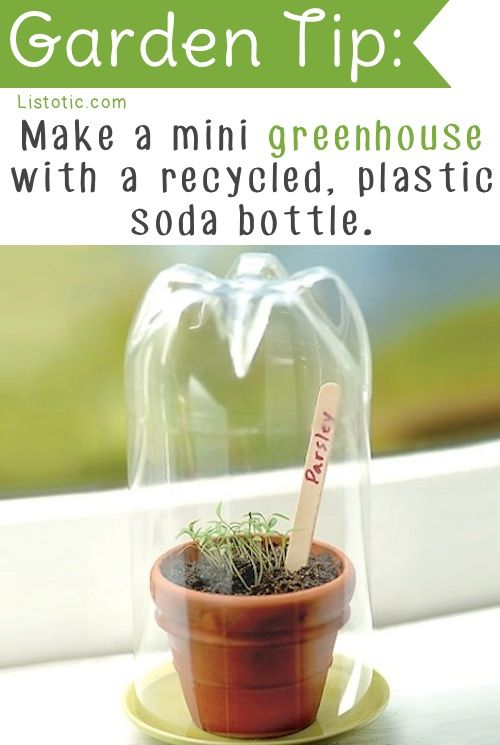 Get your seedlings off to a good start with their very own little greenhouse! The bottom 3/4 part of a plastic soda bottle makes for the perfect little dome to cover your little pots with. This would be a fun project to get the kids involved with.