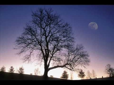 Bvdub - It's Too Late #ambient