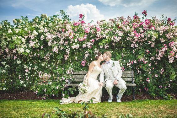 Bride and groom rose garden — richard barlow photography | Raleigh, North Carolina + International Wedding, Portrait, and Commercial Photographer