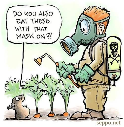 Do you? We hope now, Eat organic! // The Truth About Cancer