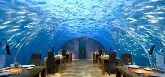 ITHAA UNDERSEA RESTAURANT   - Conrad Maldives Rangali Island Hotel