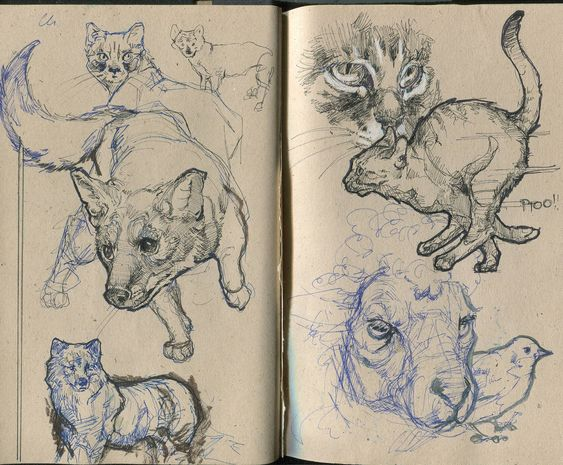 Pages from a sketchbook.