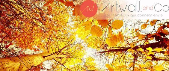 Autumn Collection of Design canvas