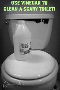 DIY toilet cleaner!