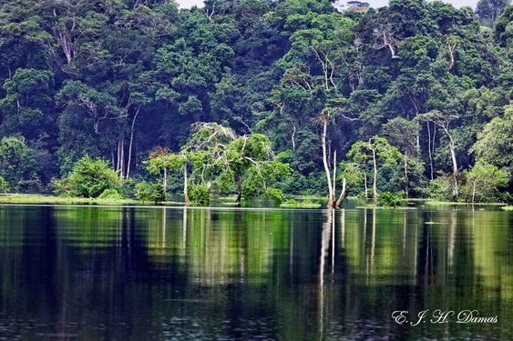 Loango National Park in Gabon | Amazing GABON