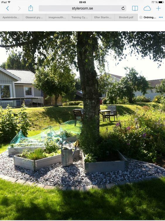 Sten +kant runt pallkrage | Malins trädgÃ¥rd | Pinterest : trädgård diy : Trädgård