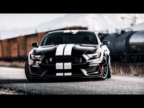 Video Skunked Gt350 Ford Mustang Shelby Sports Cars Mustang