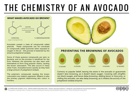 A química do abacate