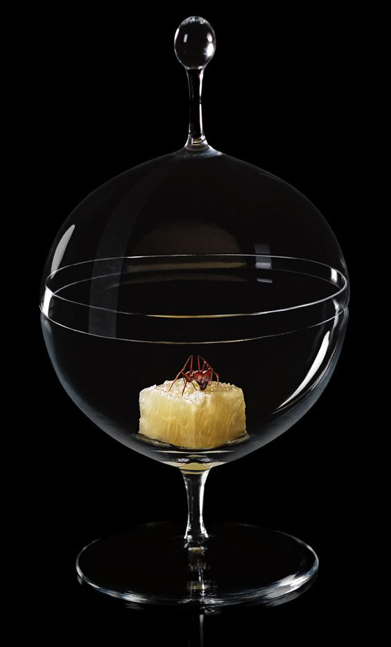 Ants and pineapple. D.O.M.: Rediscovering Brazilian Ingredients. Alex Atala. Photo © PHAIDON. http://www.yatzer.com/alex-atala-dom
