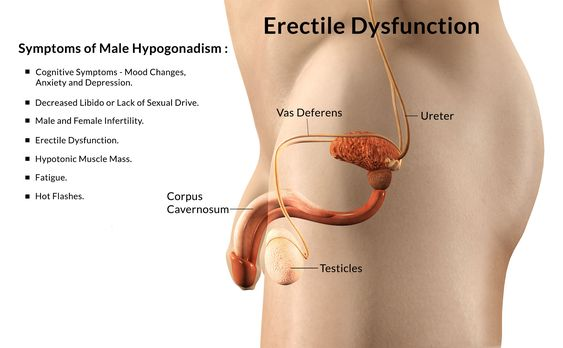 Ayurveda Remedies for Erectile Dysfunction