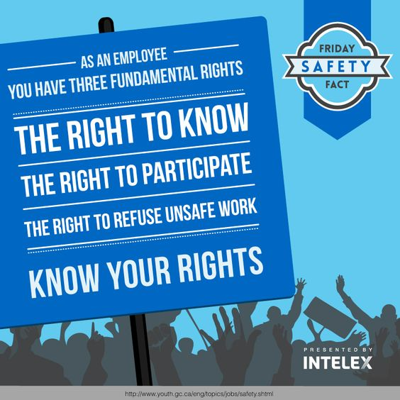 information about fundamental rights The irish constitution recognises and declares that you have certain fundamental personal rights these are confirmed and protected by the constitution.