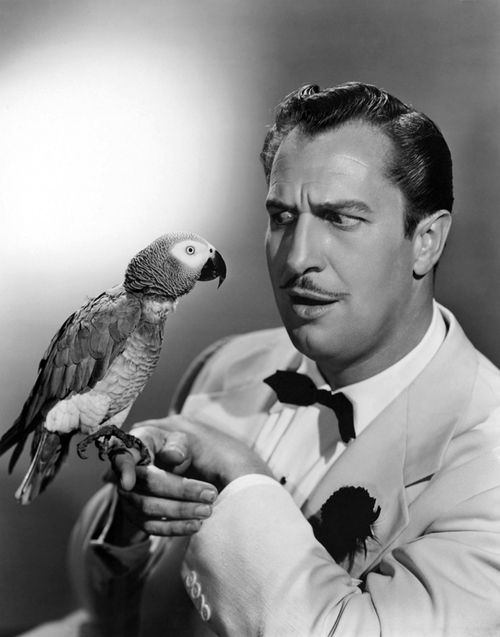 "Vincent Price with a feathered friend, a still for ""Champagne for Caesar"" -- comedy was his forte."