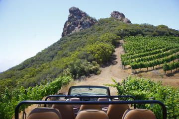 "Malibu Wine Safari  |  Such a fun girls day activity! Take a 2-hour ""safari"" through the beautiful Saddlerock ranch. You get to feed llamas and zebras, and taste 6 different delicious wines!"