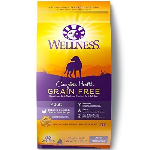 Wellness Complete Health Natural Grain Free Dry Dog Food Dry Dog
