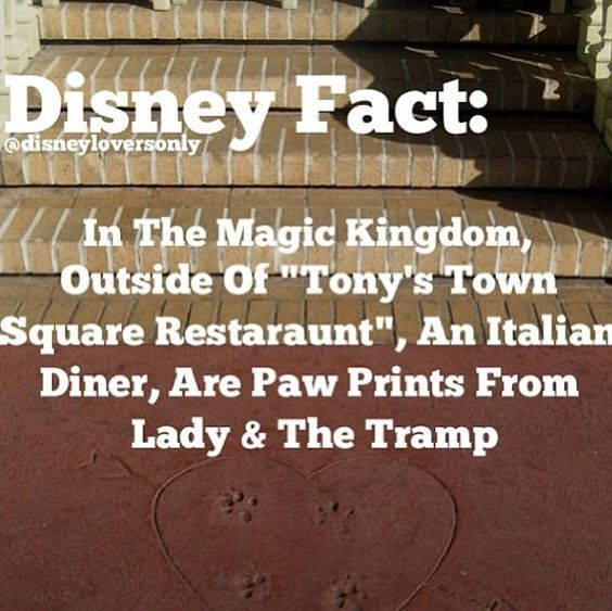 Must remember to see this the next time I go to WDW.