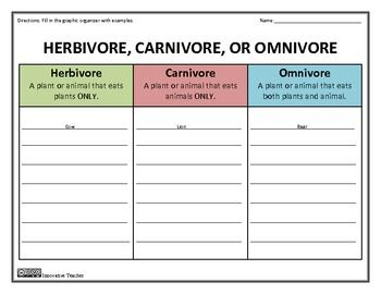 Herbivore Carnivore Omnivore Worksheet - Worksheets