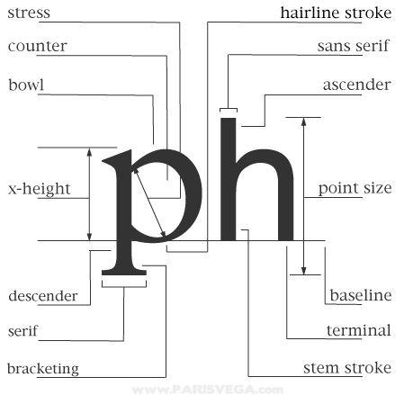Typography Diagram