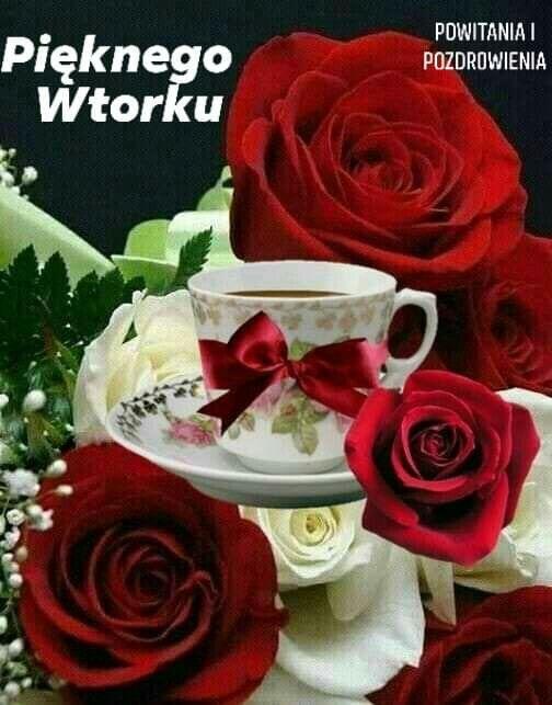 Pin By Wanda Swoboda On Wtorek Good Morning Roses Good Morning Flowers Beautiful Roses