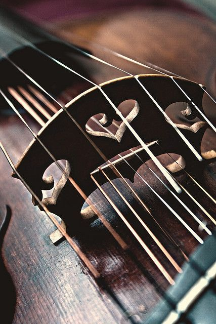 Take a look at the intricate valentine hearts cutaway in the wooden bridge of this gorgeous 6 string violin. #DdO:) - https://www.pinterest.com/DianaDeeOsborne/instruments-for-joy/ - INSTRUMENTS FOR JOY. An example of when GREAT PHOTO COMPOSITIONS https://www.pinterest.com/DianaDeeOsborne/great-photo-compositions/ crop out the surroundings so the viewer is not distracted & can focus on the subject's specific beauty. Pinned via Melanie Alexander. SOURCE: whitenoten