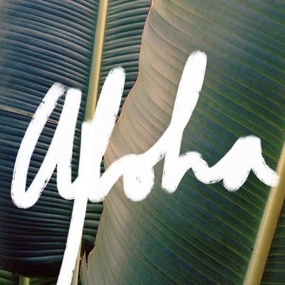 samantheeyo:  Aloha