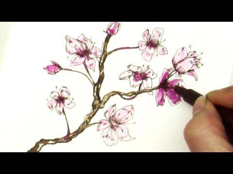 174 Pen Ink Tutorial How To Draw Sakura Cherry Blossom Branch Youtube Flower Drawing Flower Drawing Tutorials Cherry Blossom Drawing