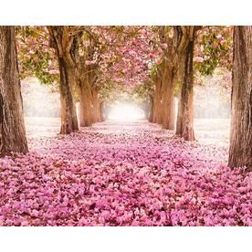 Ohpopsi Yonder Wall Mural Lowes Com Cherry Blossom Wallpaper Spring Wallpaper Tree Tunnel