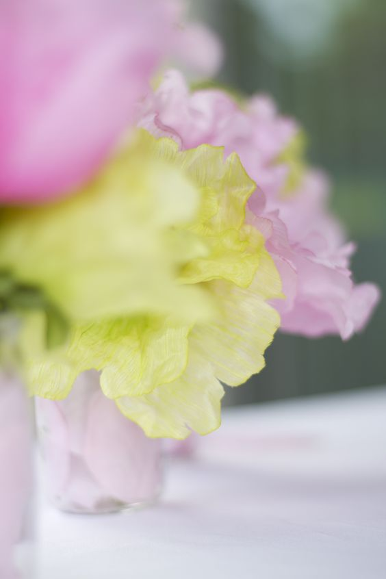 Close-up of green and pink flowers. Pink and Green. Photo Credit : A. Mordant - Click to read full instructions on how to do here: http://www.wedotahiti.com/how-to-decorate-a-winter-themed-table #tahitiweddingplanner #tahitiweddingpackage