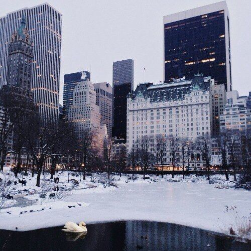 central park. my biggest dream in life is to visit new york during…
