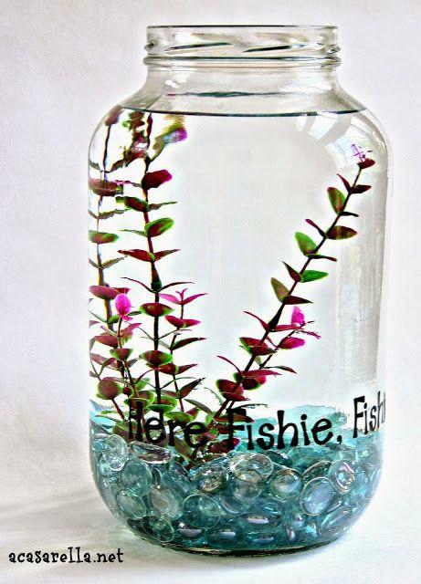 'A Casarella: Pickle Jar Fish Bowl